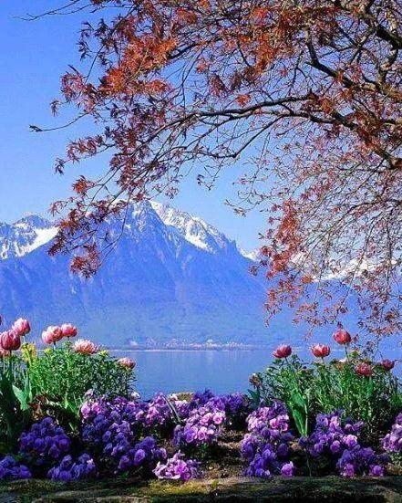 Lake Geneva, Switzerland.