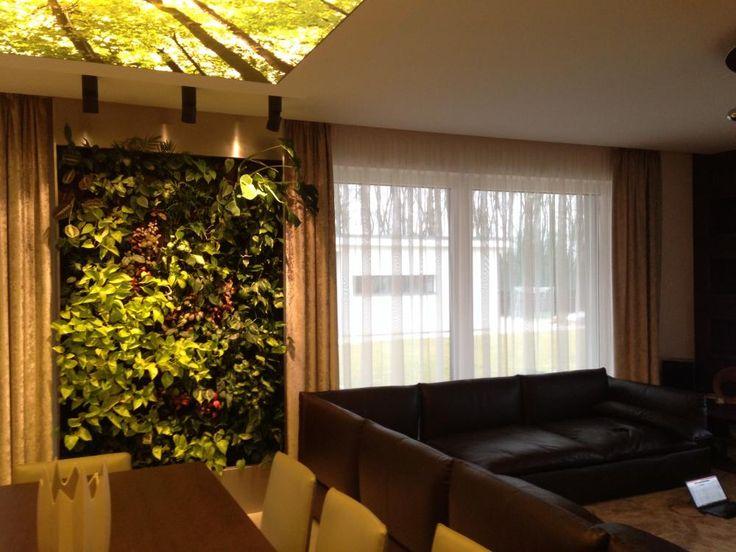 Zöldfal a nappaliban