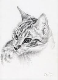 Znalezione obrazy dla zapytania rysunki ołówkiem zwierząt