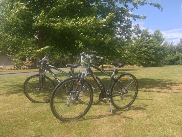 New #avanti bikes - perfect for exploring Marlborough