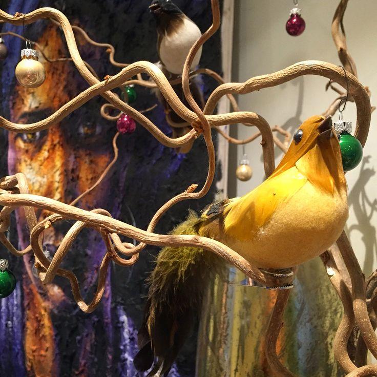 Birds:)