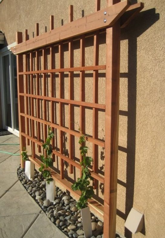 Another wall trellis