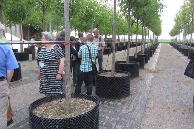 Realizzazione impianto fertirrigazione - Cirimido (CO)