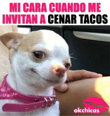 Memes Mexicanos Nuevos Memes Mexicanos Nuevos Funny Spanish Memes Memes Funny Jokes