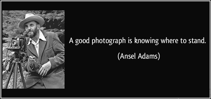 """A #goodphotograph is knowing where to stand."""