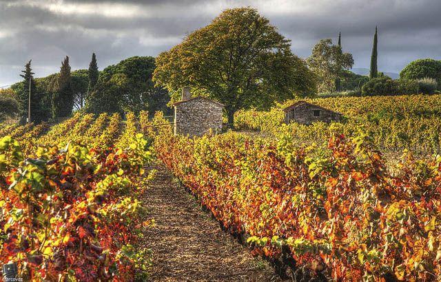 Le-castellet-octobre © marcovdz - Flickr Creative Commons