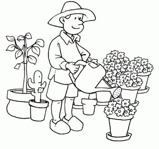 jardineiro para pintar