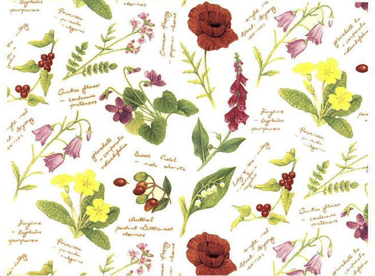 Mejores 66 imágenes de Flowers en Pinterest   Etiquetas, Alfarería ...