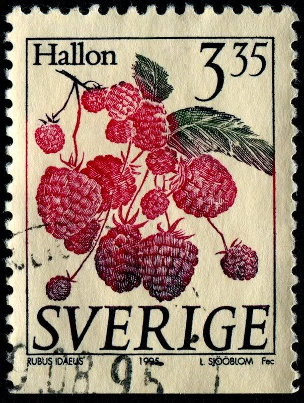 Red Raspberry (Rubus idaeus), Scott No. 2002, Facit No. 1883. Designed and engraved by Lars Sjööblom, and issued by Sweden on January 2, 1995.