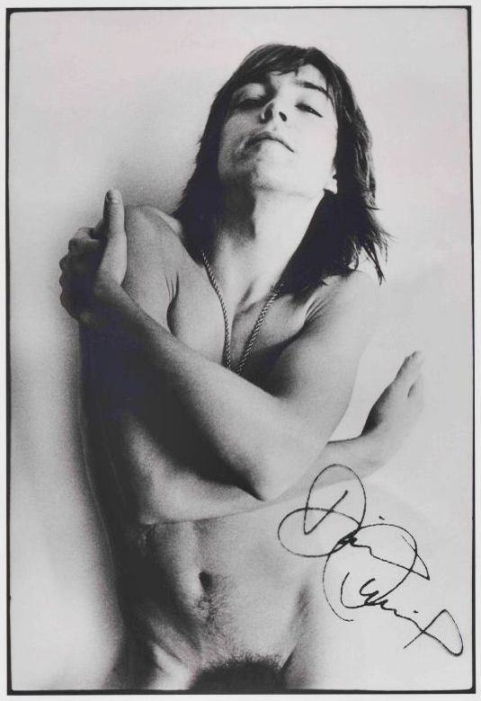 Opinion Nude pictures of david cassidy are