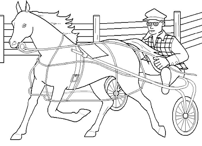 75 best lara images on pinterest creative ideas dream for Thoroughbred coloring pages