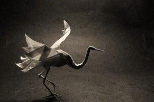 Origami Bird Crane Art Photo HD Wallpaper