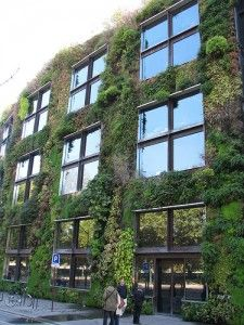 Vertical Wall Garden At The Musee De Quai Branly In Paris