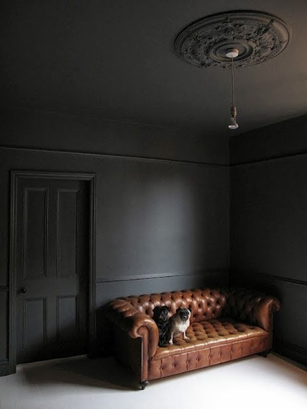 Monochrome - walls & ceiling - dark grey - brown chesterfield