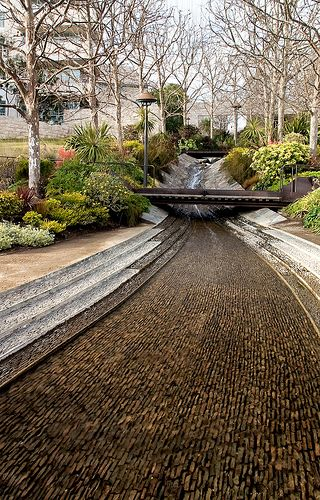 Urban Gardens | Waterway through wooded park