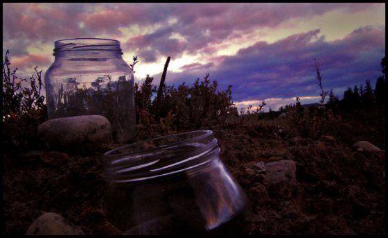 Jars in a Graveyard McGregor, South Africa 2010