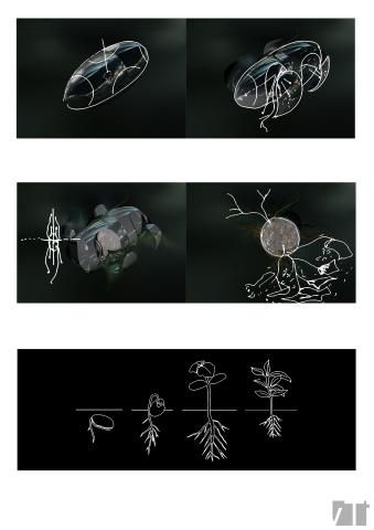 Exploration of micro-architecture: exploded pill and plant seed