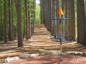 Disc Golf Lingo, how to talk disc golf