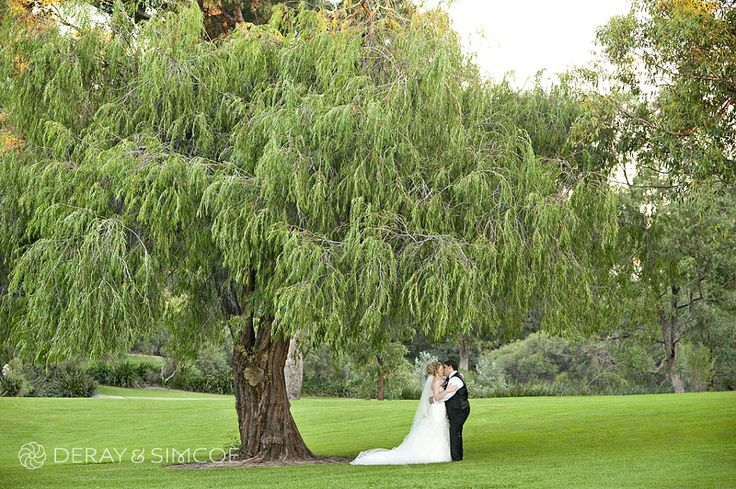 Bride and Groom kiss under a native Australian tree Location ~ Kings Park, Perth Photography by DeRay & Simcoe