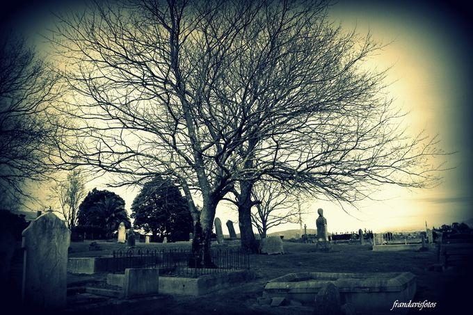 Graveyard, Scottsdale, Tasmania