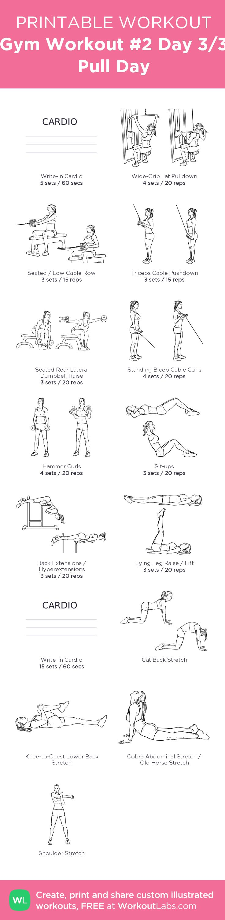 Gym Workout #2 Day 3/3 Pull Day –my custom workout created at WorkoutLabs.com • Click through to download as printable PDF! #customworkout