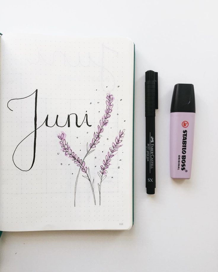 Bullet journal monthly cover page,  June cover page,  hand lettering,  lavender drawing,  lavender doodle.    @emyplanner