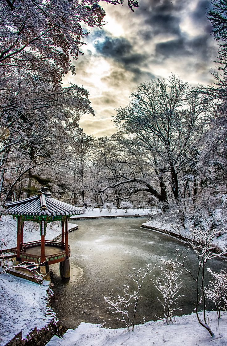 What an amazing photo! Snowy Morning, Seoul, South Korea More
