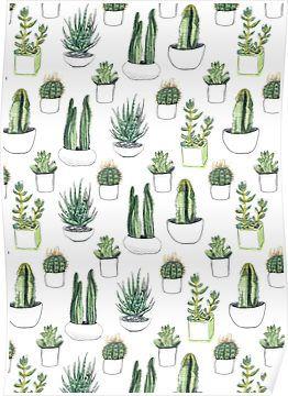 Watercolour cacti & succulents | Poster