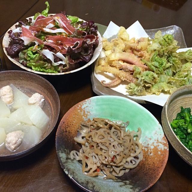 職場の元ボスがお宅で採れたふきのとうを朝一番で届けてくれた! 夜はダンナが大阪から帰ってきたので、早速天ぷらにして春の大人の味を楽しんだよ♪  ふきのとう&イカ下足の天ぷら 菜花の辛子和え 大根と鶏つみれの煮物 蓮根のきんぴら 生ハムサラダ - 20件のもぐもぐ - 2015.2.26 ふきのとうの天ぷら by ゆみず