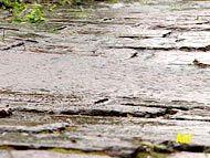 Regen; Rechte: WDR