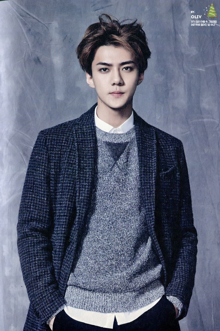 SEHUN // 2015 Season's Greetings official calendar