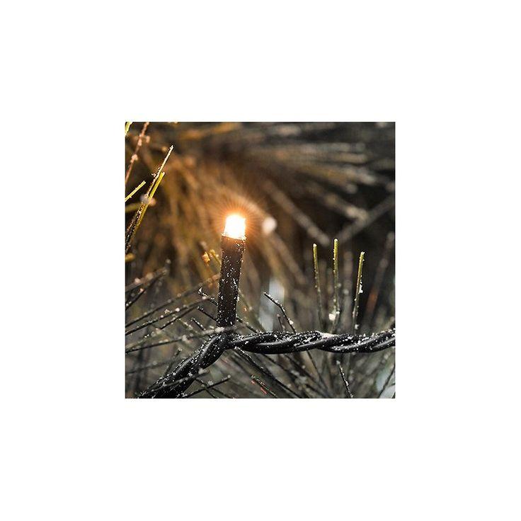 Amazing  Lichterketten Konstsmide Konstsmide Dekorative Beleuchtung Bernstein