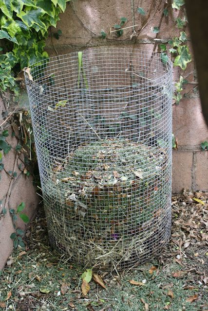 Make your own compost holder ~ Haz tu propio recipiente para compost.