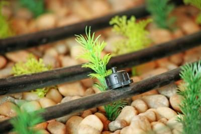 Types of Drip Irrigation Emitters