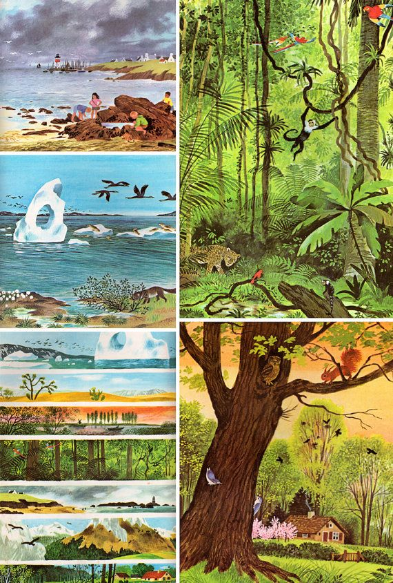 Stories from Nature: Thirty-one Animal Tales by Jane Werner Watson, illustrated by Gerda Muller (1973).