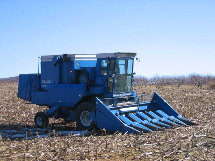 Rare that you ever see a Ford combine, in this day and age.
