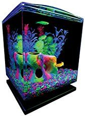 Tropical Fish Keeping | Aquarium Accessories - How Can We Help You?