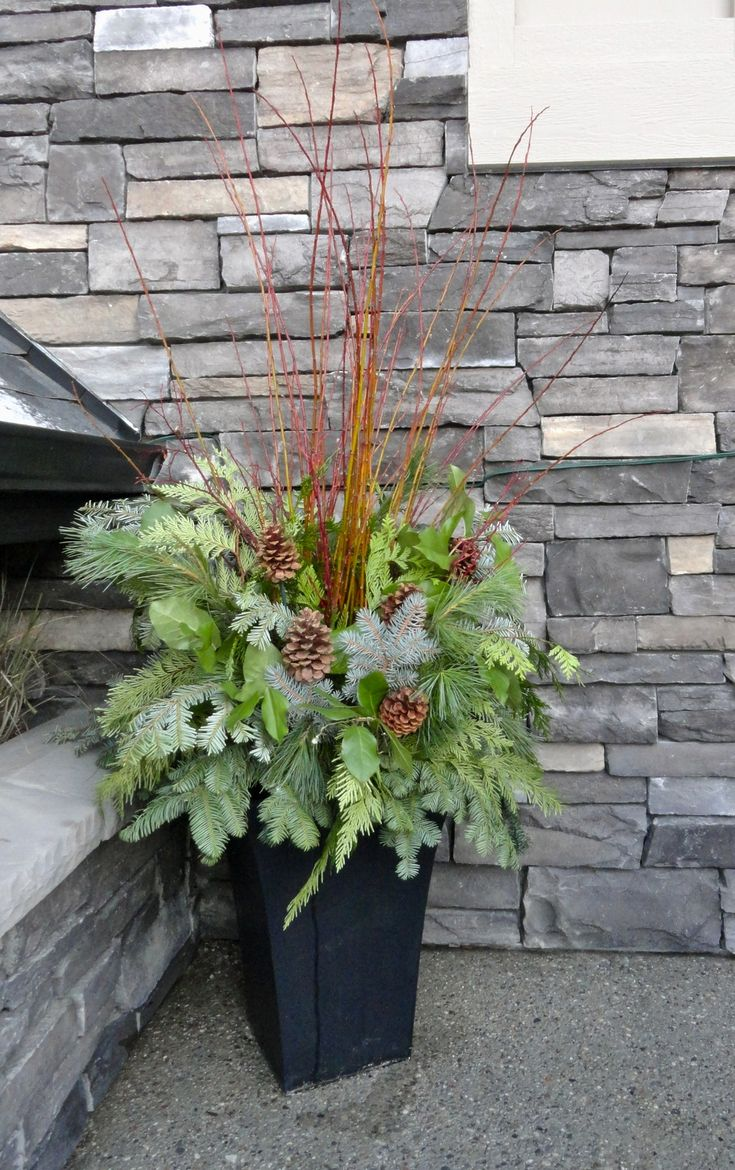 30 best winter containers images on pinterest planters