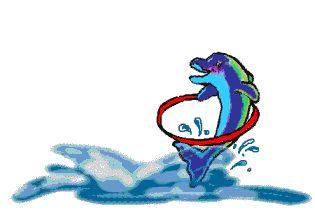 """Desgarga gratis los mejores gifs animados de delfines. Imágenes animadas de delfines y más gifs animados como gracias, angeles, animales o besos"""""""