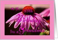 89th Birthday ~ Grandma - Grandmother / Pink Cone Flower Card by Greeting Card Universe. $3.00. 5 x 7 inch premium quality folded paper greeting card. Birthday greeting cards & photo cards are available at Greeting Card Universe. A picture is worth a thousand words, so why not send a photo birthday card this year? Turn to Greeting Card Universe for all your birthday card needs. This paper card includes the following themes: Madeline Allen, Digital-Art, and SmudgeArt. Greet...