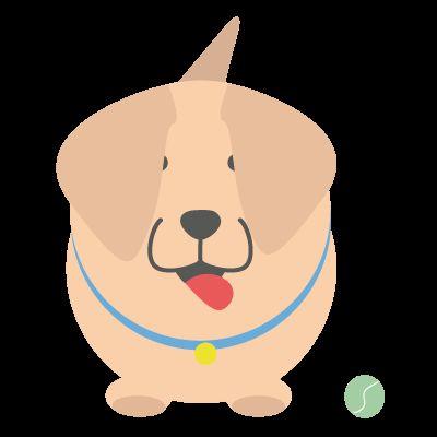 Encuentra paseador, canguro y hospedaje para perros en tu zona | DogBuddy