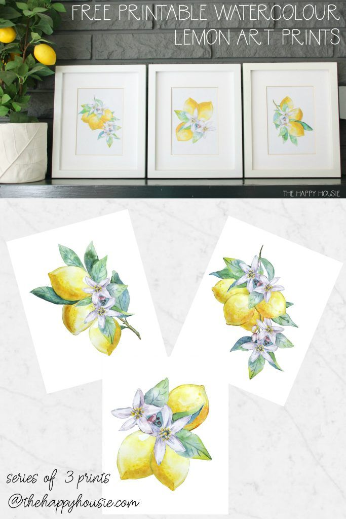 Series Of 3 Free Printable Watercolour Lemon Art Prints Lemon