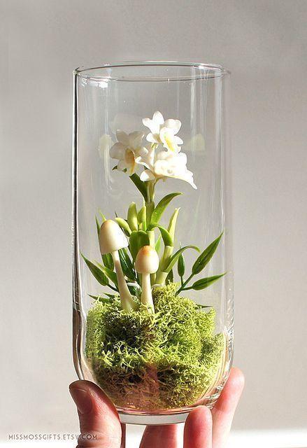 die besten 25 orchideen im glas ideen auf pinterest orchideenterrarium orchideen und. Black Bedroom Furniture Sets. Home Design Ideas