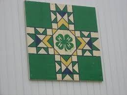 Image result for 4-h quilt