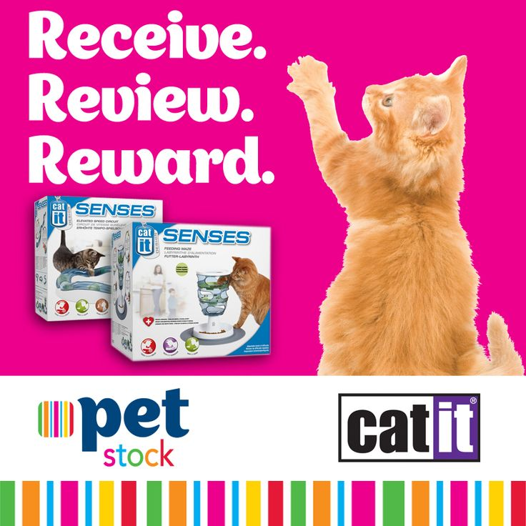 Do you have a playful kitty? Enter our Catit Receive.Review.Reward competition for your chance to receive one of these fabulous Catit Senses Toys for FREE and share your thoughts with our PETstock Family! http://bit.ly/1nwteW4  Competition closes midnight Sunday 26th October 2014