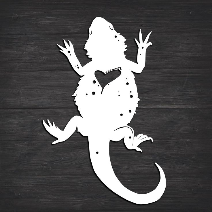 Download Bearded Dragon Heart Svg (Recommended For Projects 10 ...