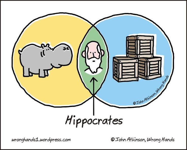 http://wronghands1.files.wordpress.com/2013/10/hippocratic.jpgClassroom Image, Friend Diagram, Hilarious Shenanigans, Funny Junk, Fun Stuff, Geek Science, Hippocratic Jpg 753 603, Funny Stuff, Hahaha Funny