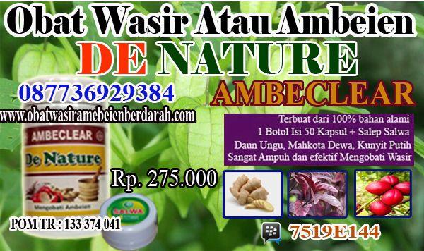 http://rahmat.inube.com/blog/4460417/cara-menghilangkan-penyakit-wasir-menahun/
