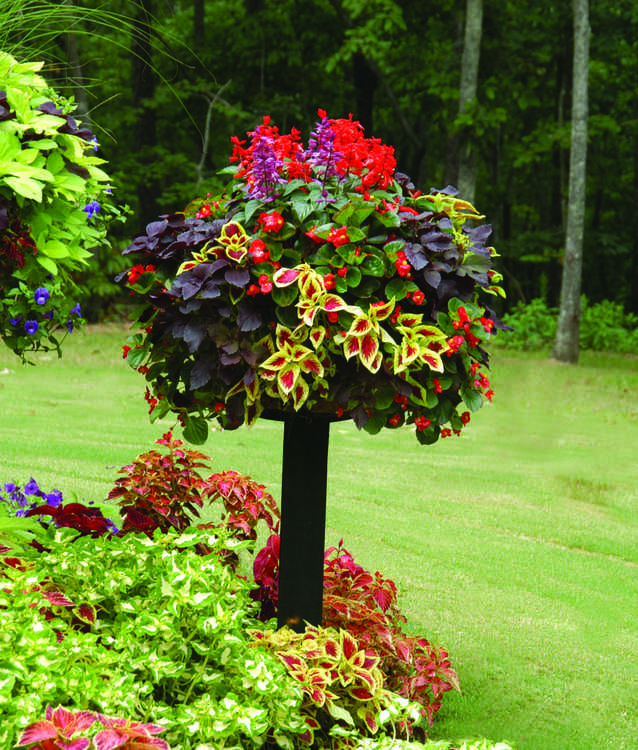 "Love this ""tree"" of mixed colorful plants! Really a basket sitting on a post."