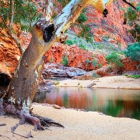Ormiston Gorge in the West MacDonnell Ranges, Northern Territory, Australia.  By Jarrod Castaing / 500px